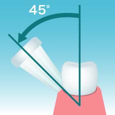 歯と歯ぐきのすき間に45度の角度でハブラシを当てます。